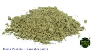 Hemp Protein, Cannabis sativa