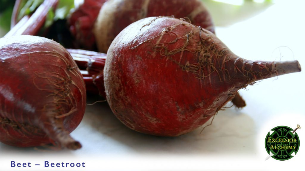 Beetroot, Beta vulgaris