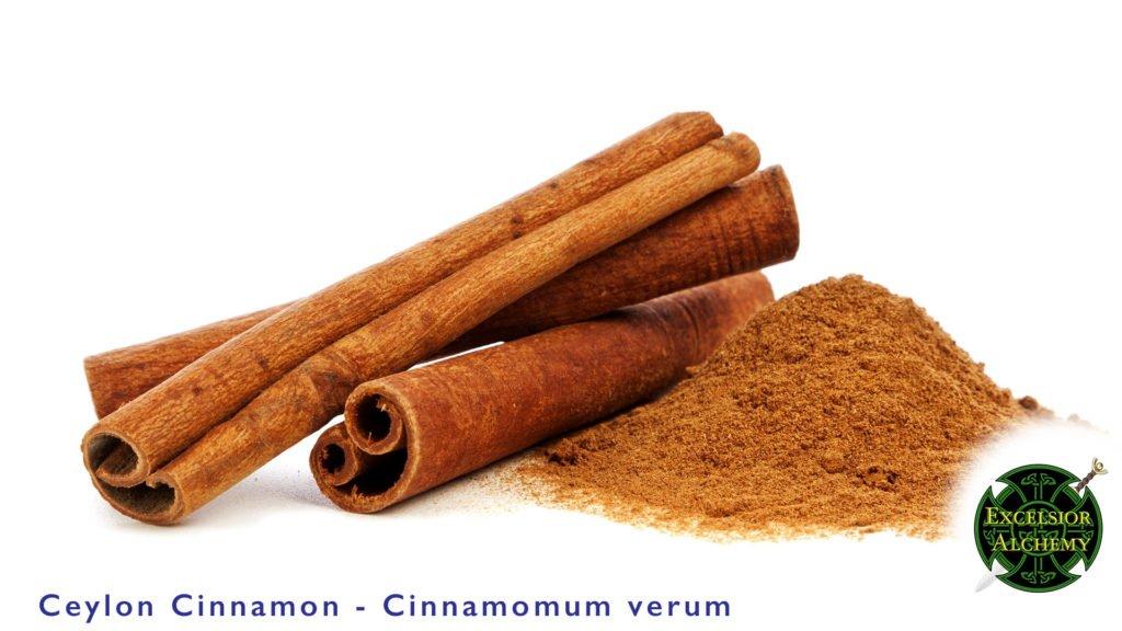 Cinnamon Cinnamomum verum