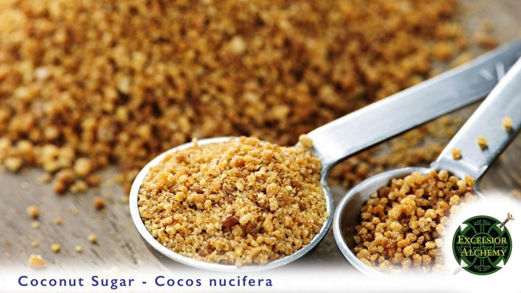 Coconut Sugar - Cocos nucifera
